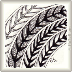 Zentangle-Pattern 'Dorsal' by Anita Aspfors Westin, presented by www.ElaToRium.de
